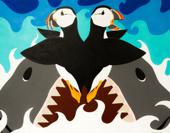 Macareux et requins